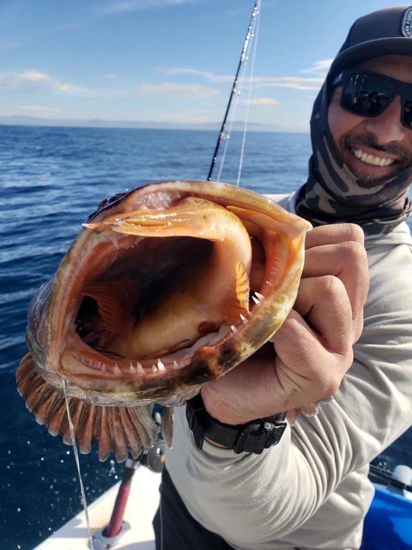 man show fish teeth